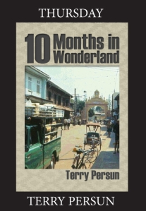 Ten Months In Wonderland